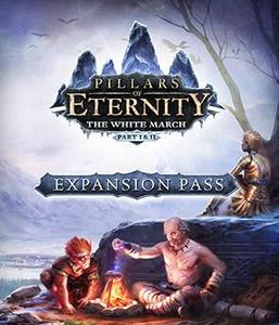 Pillars of Eternity Expansion Pass (PC Download)